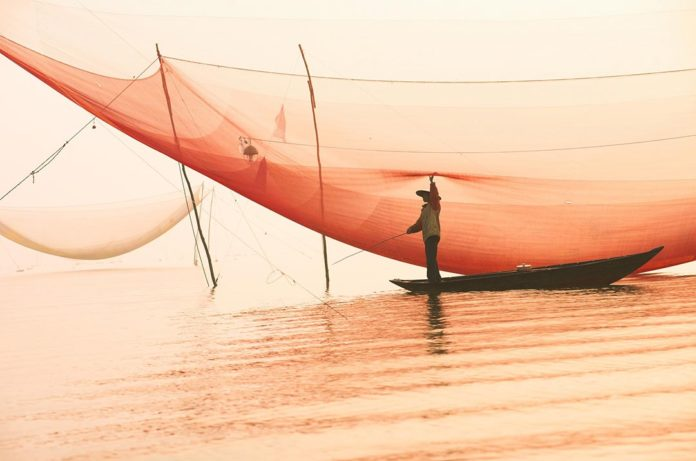 Fisherman Meets Businessman: A Story About Simple Things In Life